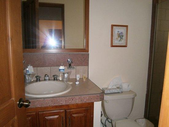 El Ameyal Hotel & Family Suites : Baño amplio y moderno.
