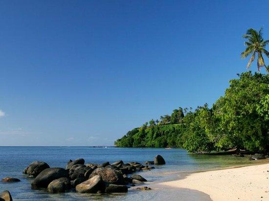 塔韋烏尼島照片