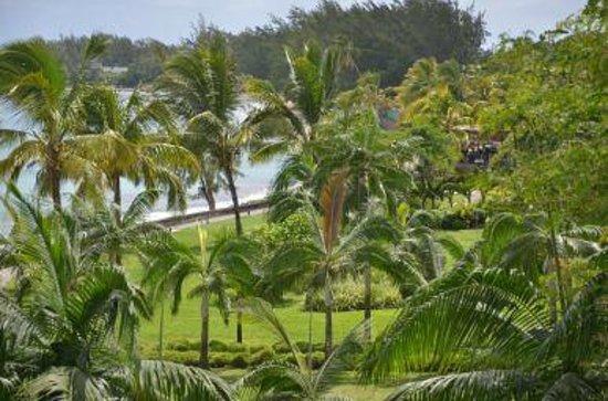 Le Meridien Ile Maurice: La vegetación del hotel