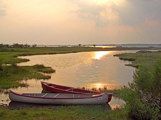 Pulau Chincoteague, VA: Chincoteague Island