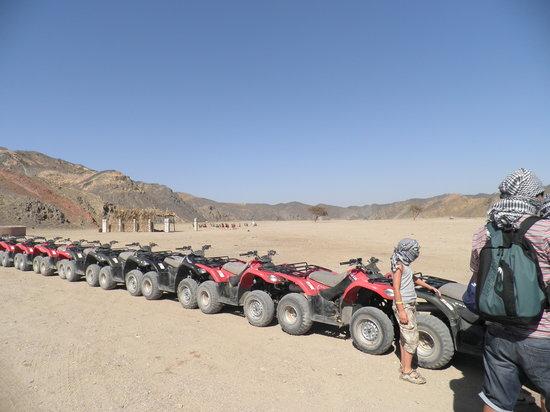 Three Corners Fayrouz Plaza Beach Resort: in quad nel deserto