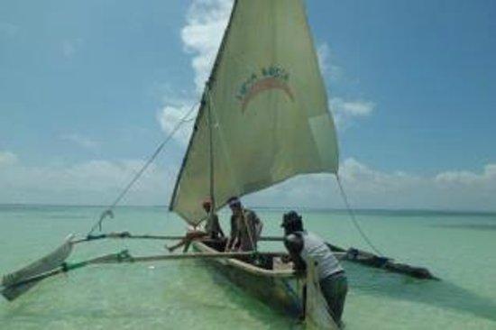 Palumboreef Beach Resort: in barca con i ragazzii del posto a vedere le stelle marine