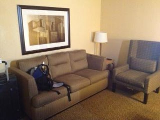 Embassy Suites by Hilton New Orleans - Convention Center: pull out sofa