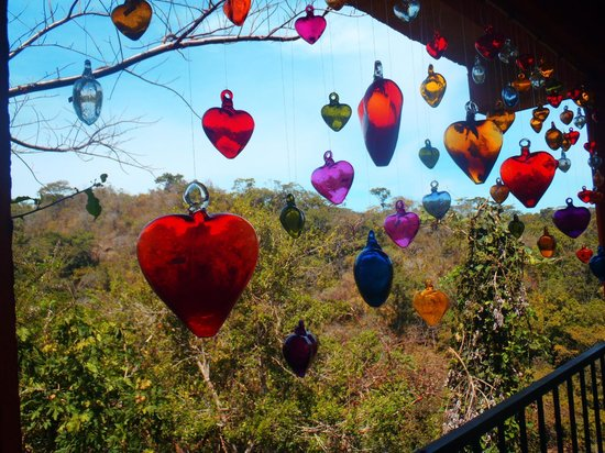 Vallarta Botanical Gardens : view from the gift shop area