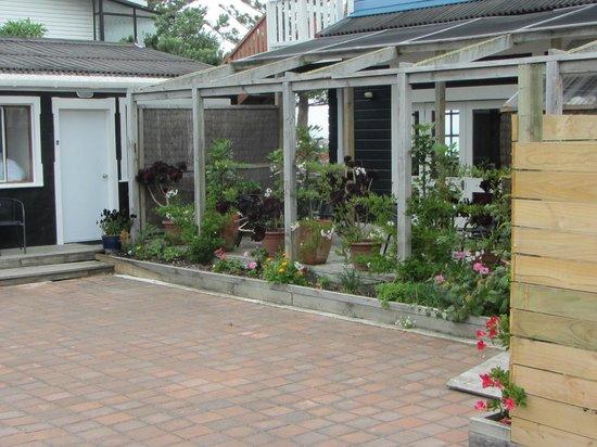 الباتروس موتل: Courtyard outside Room