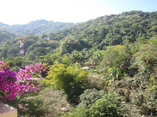 Barcelo Puerto Vallarta: Our view on the other side of the jungle
