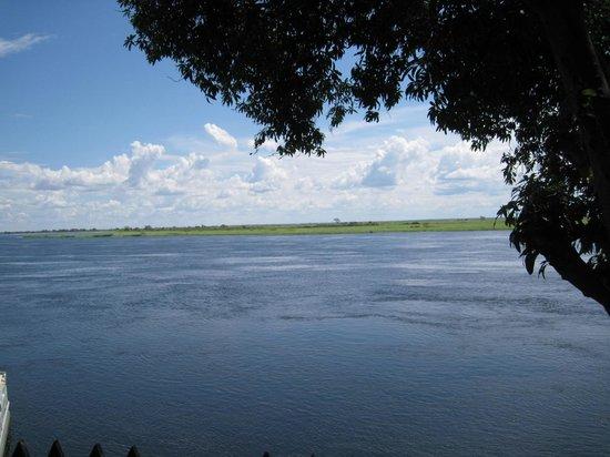 Senanga Safaris Lodge: view of zambesi.. you need walk over to it