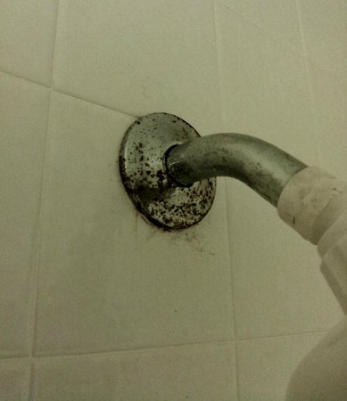 Comfort Suites: Rust on the shower head pipe