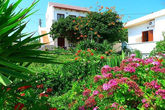 Anavaloussa Apartments: La résidence, jolie fleuri