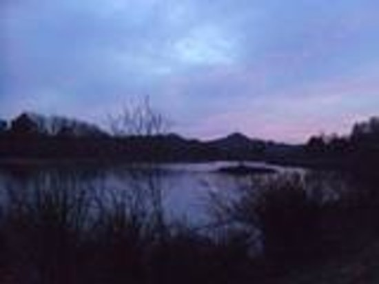 Deerwoode Lodge & Cabins: Sunset over pond 2