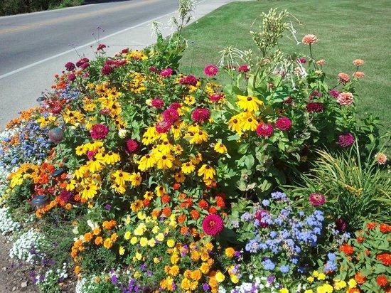 Pine Grove Resort : Gardens