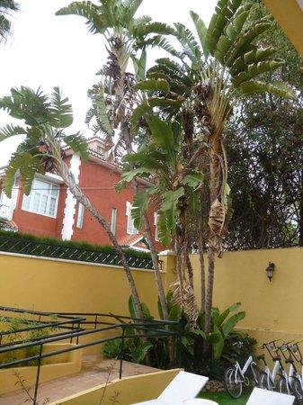 Villa Lorena Malaga: nice corner