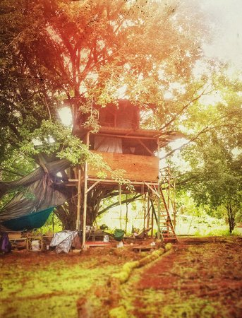 A Beautiful Day Spa: Our rustic, handbuilt treehouse