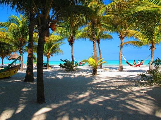 Holbox Hotel Mawimbi: Beach