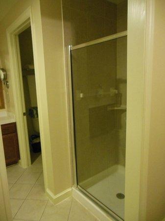 Wyndham La Cascada: Stand-up Shower in master Bath