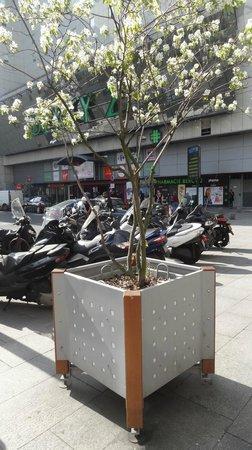 Ibis Paris Porte De Bercy: Ao lado do hotel