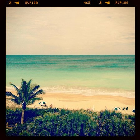 Disney's Vero Beach Resort: My view of my room :)