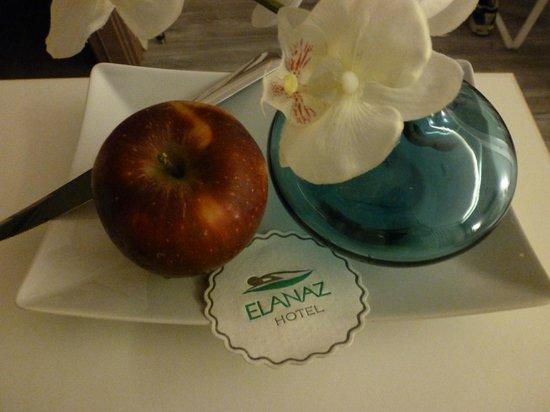 Elanaz Hotel Istanbul: Benvenuto