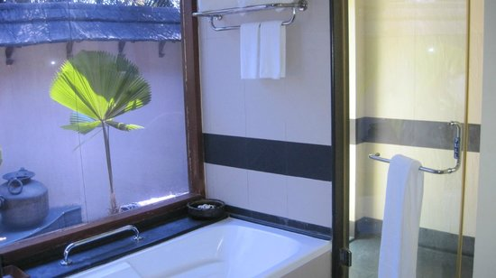 The Zuri Kumarakom: indoor shower and bathtub