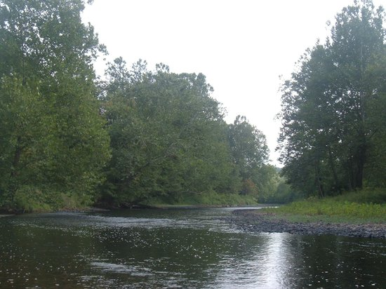Blackwater Outdoor Adventures : Down the River