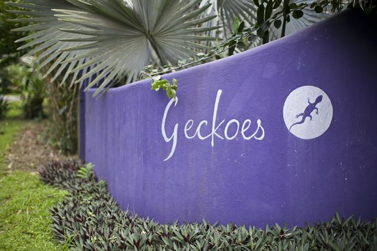 Geckoes Lodge: entrance
