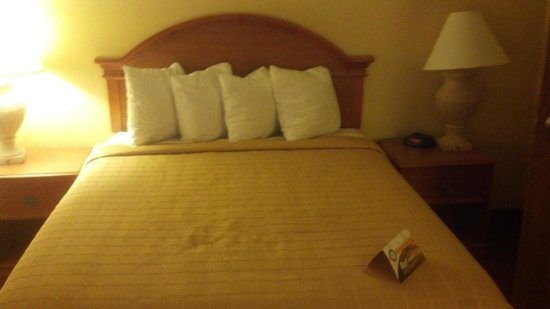 Quality Inn and Suites: comfy bed