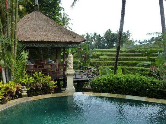 Villa Orchid Bali: Fruestuecks - Pavillon