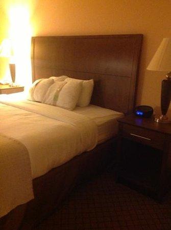 Holiday Inn Barboursville : Bedroom