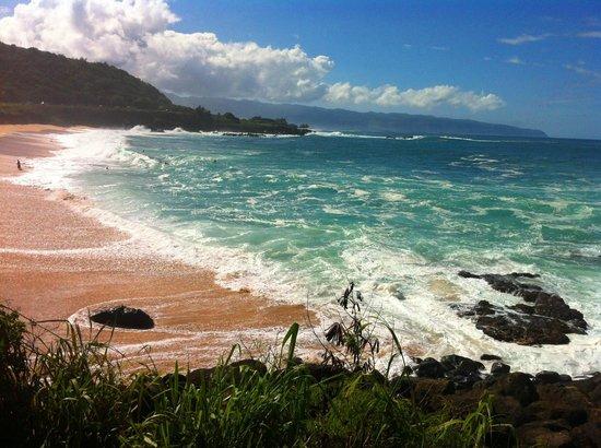 Kalani Hawaii Private Lodging: Waimea Bay