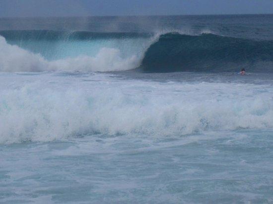 """Kalani Hawaii Private Lodging : """"Waveshow"""""""