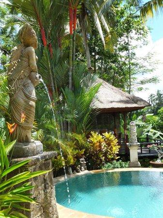 巴厘蘭花別墅照片