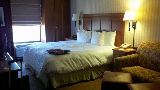 Hampton Inn Charlottesville: guest room