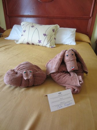 Hotel Riu Playacar: Towel Art
