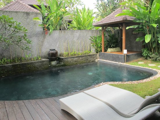 The Kampung Ubud Villa: Private pool