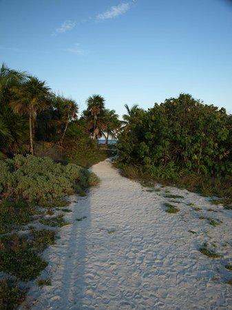 Grand Sirenis Riviera Maya Resort & Spa : Beach to the left