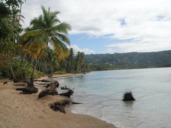 Las Palmas Residence : nearby beach