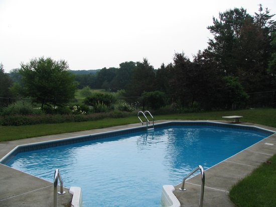 Thyme in the Country: Salt filtered swimming pool