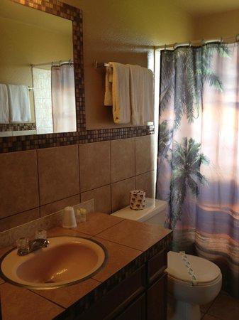 Oasis Motel: bathroom