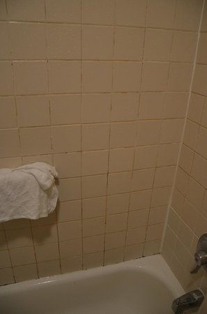 Knights Inn & Suites Gallup: Moldy shower.