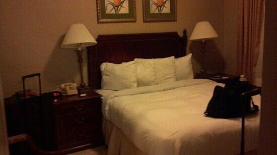 Runway Inn: Queen size bed