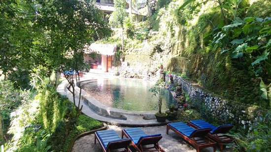 Hotel Tjampuhan & Spa: The Natural Water Pool