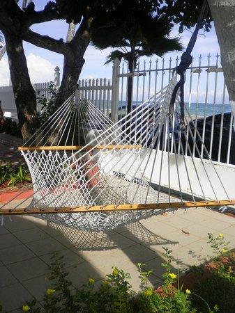 Tres Palmas Inn: The pool