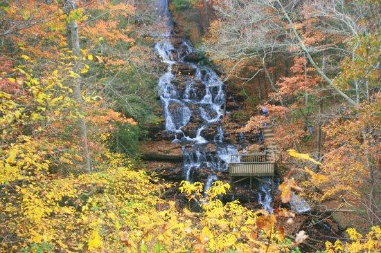 Vogel State Park: waterfall