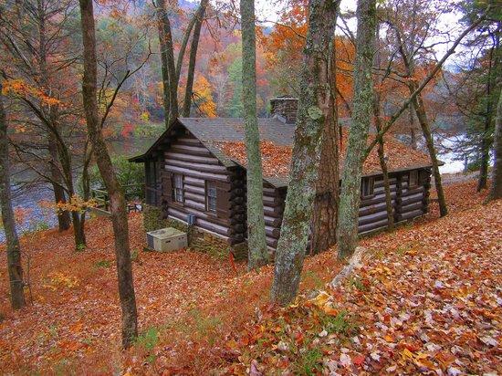 Vogel State Park: cabin #35
