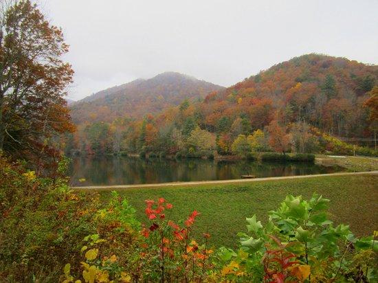 Vogel State Park: Trail