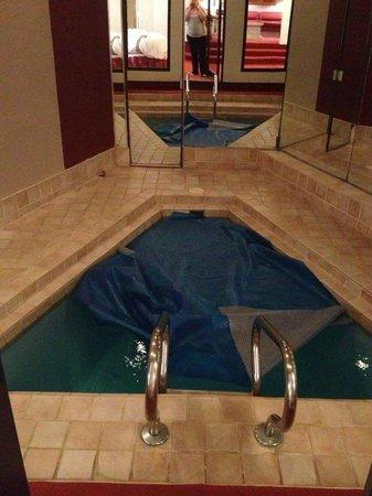 Pocono Palace Resort: Garden Eden of Apple in suite pool