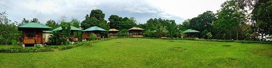 Bunaken SeaGarden Resort: The whole resort