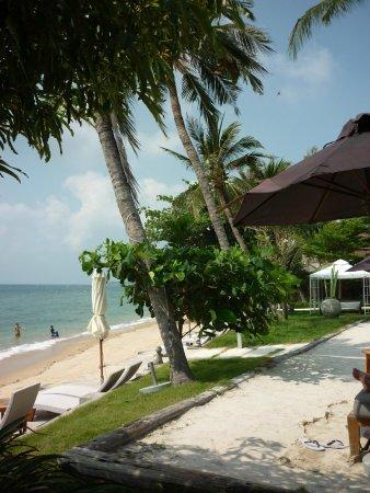 Mercure Koh Samui Beach Resort: Wow, what a view!