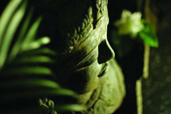 Kiva Spa and Bathhouse Mullumbimby: Tranquil Sacred Garden