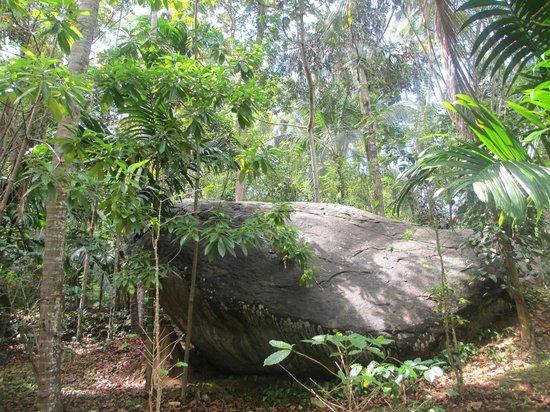 Provincia Central, Sri Lanka: アーユピヤサ